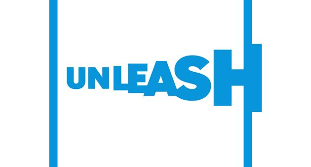 UNLEASH: Mentorship for international entrepreneurs for sustainable development